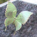 Schmetterling aus Bronze mit Tönung